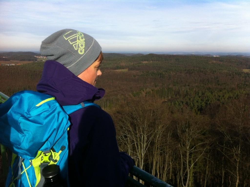 Aussicht vom Wichsenstein
