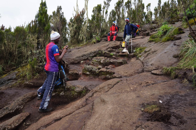06_Kilimandscharo_Moorland (2)