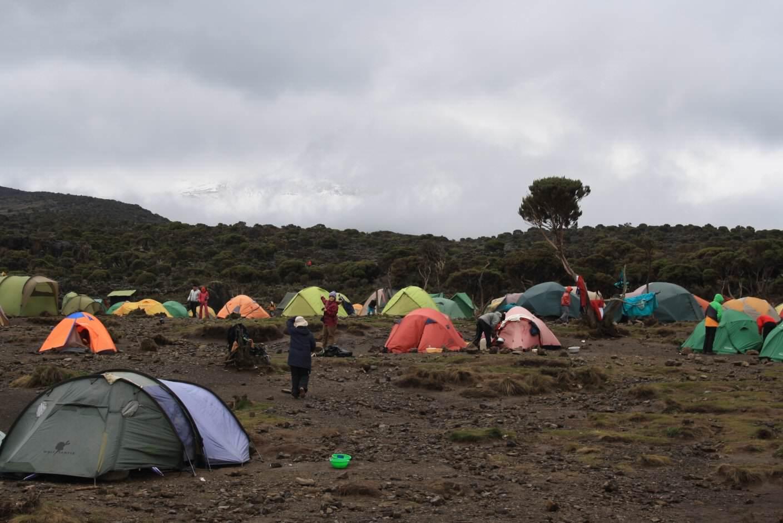 Kilimanjaro Shira Camp