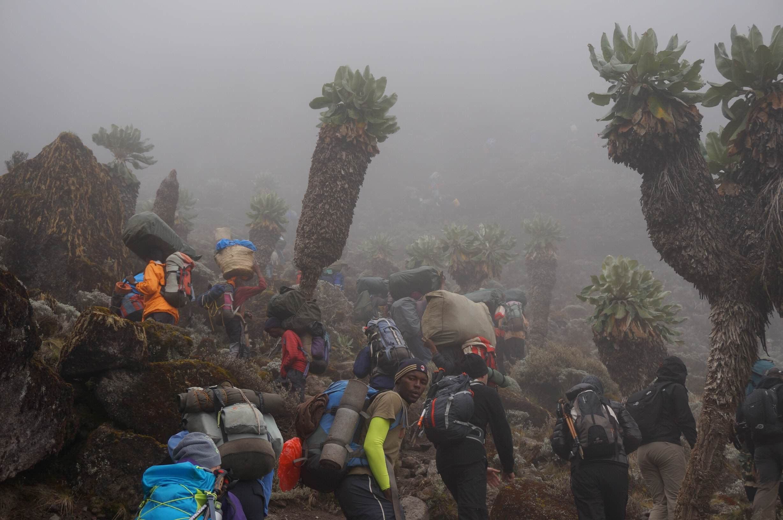 11_Kilimandscharo_Barranco_Wall (3)