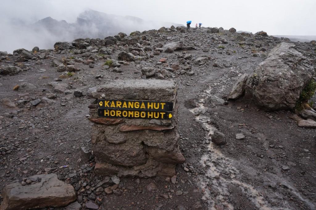 Kilimanjaro Way Down - Alpine Desert