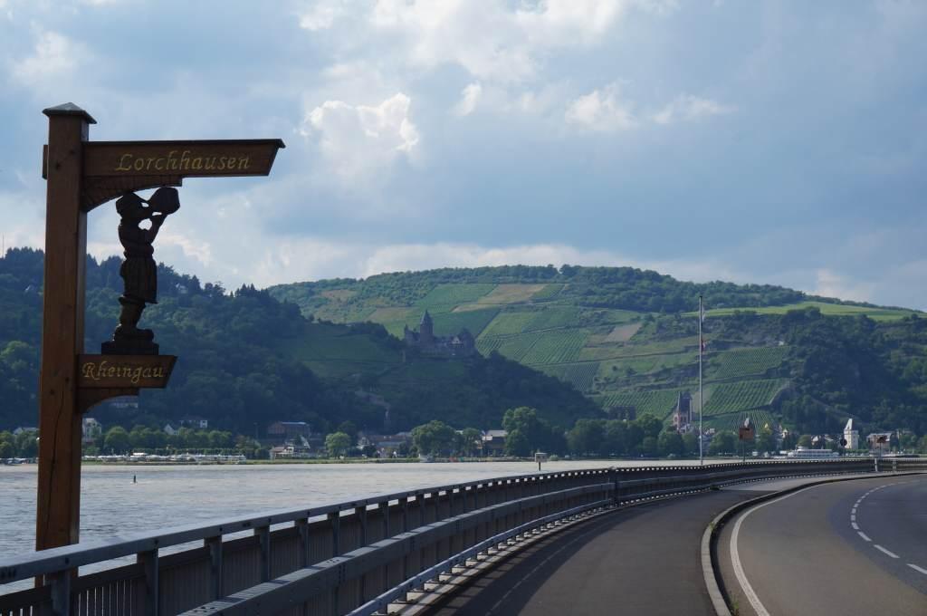 Rheingau_Weinwanderung (33) jwh