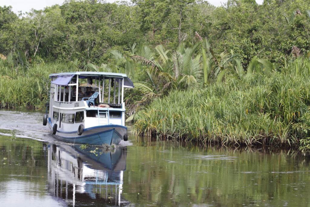 Klotok im Tanjung Putin National Park