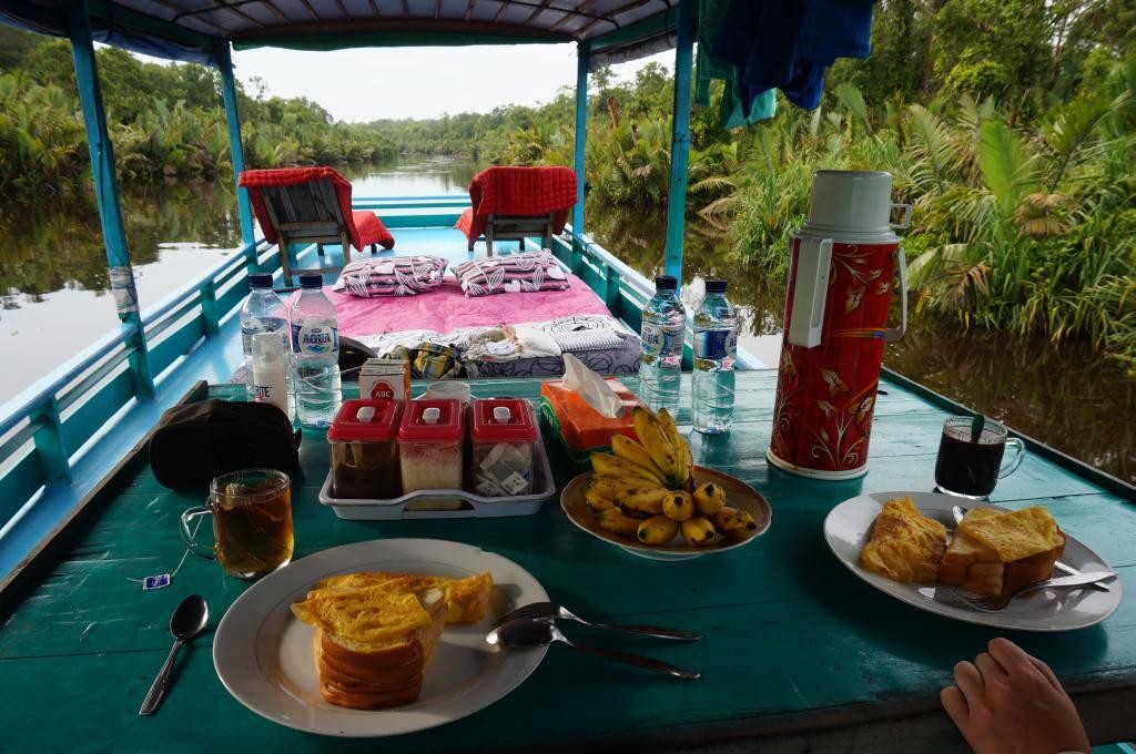 Klotok Tanjung Putin National Park