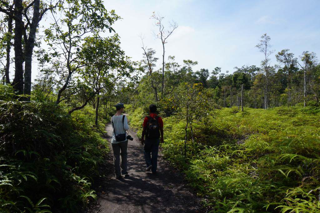 Tanjung Putin National Park