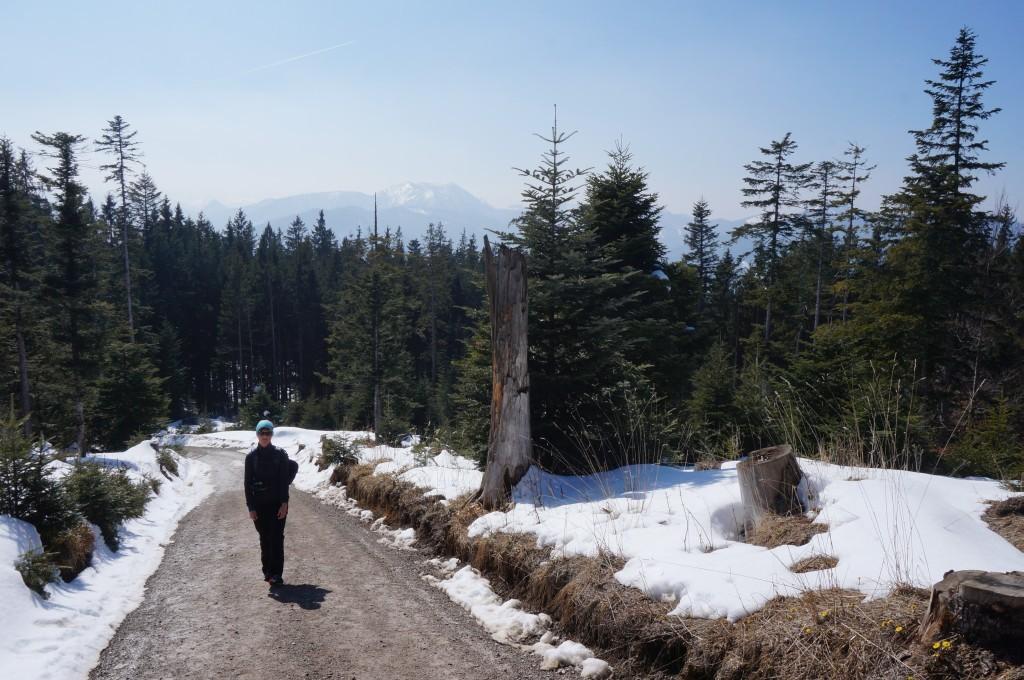Aufstieg zur Neureuthalm