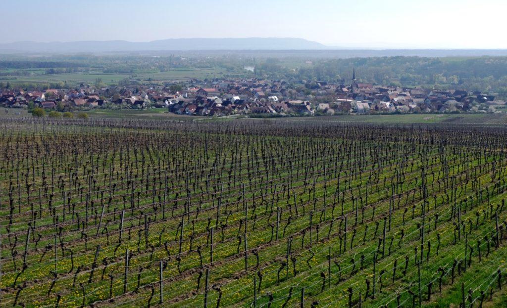 Franken Würzburger Land