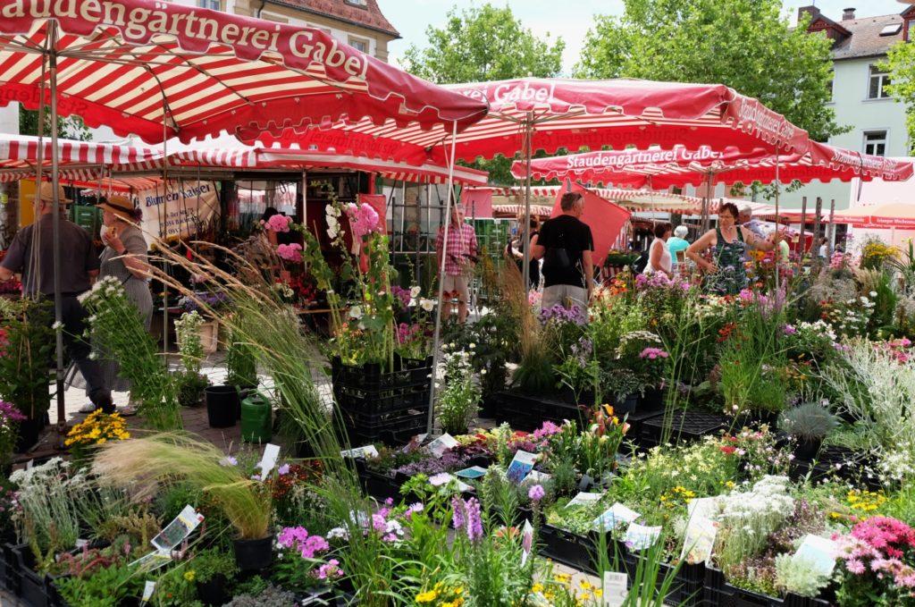 Erlangen Marktplatz