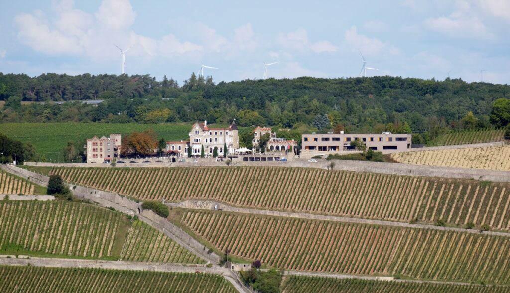 Wein am Stein Würzburg