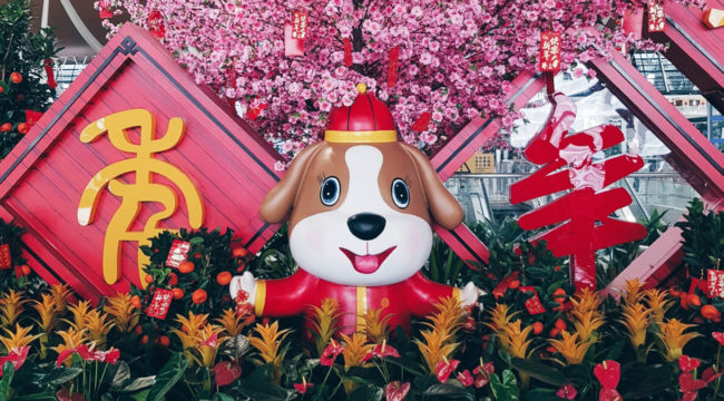 Let´s celebrate the Year of the Dog - Happy Chinese New Year 2018 ...