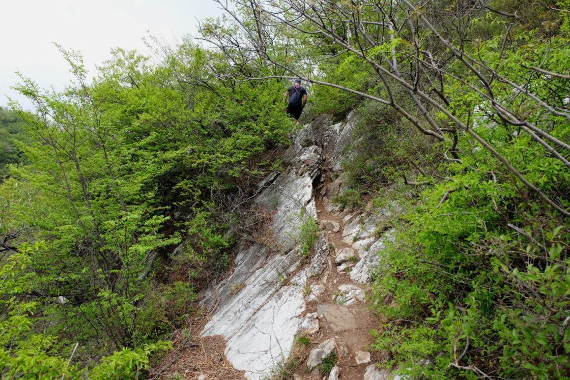 Great Wall of China - Wild Wall