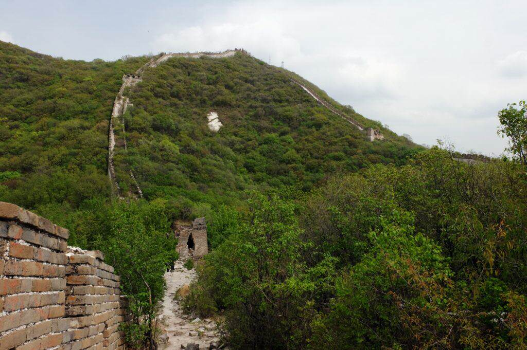 Great Wall of China - Wild Wall