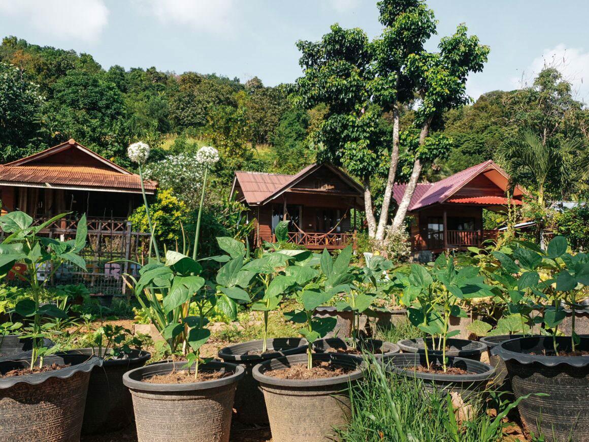 Suntisook Resort Koh Yao Noi