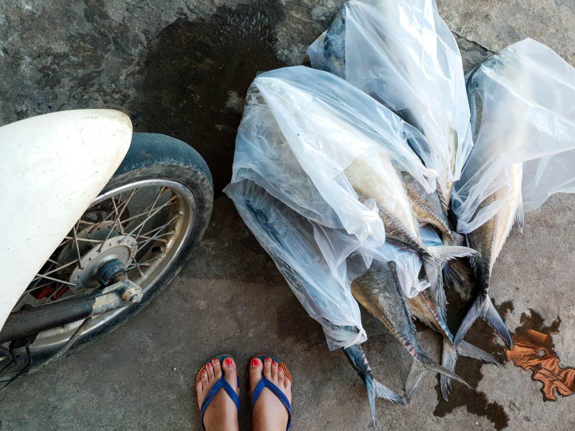 Koh Yao Noi Koh Yao Yai