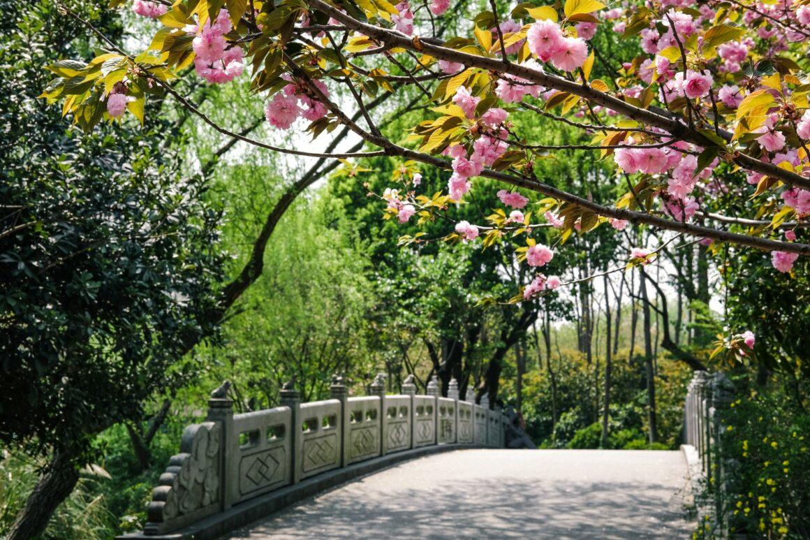 Guncan Park Shanghai