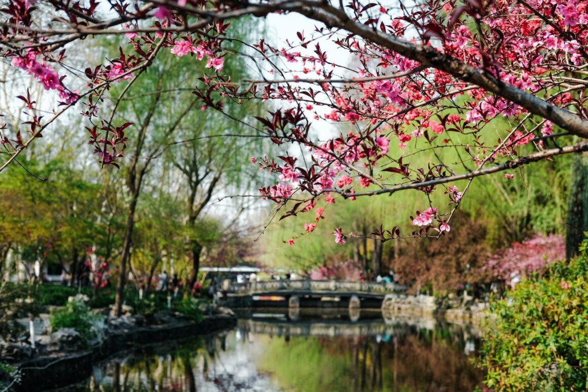 Lu Xun Park Shanghai