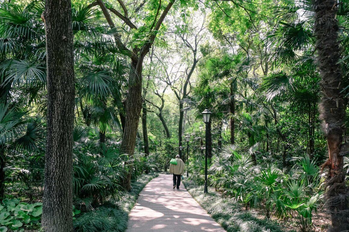 Zhongshan Park Shanghai