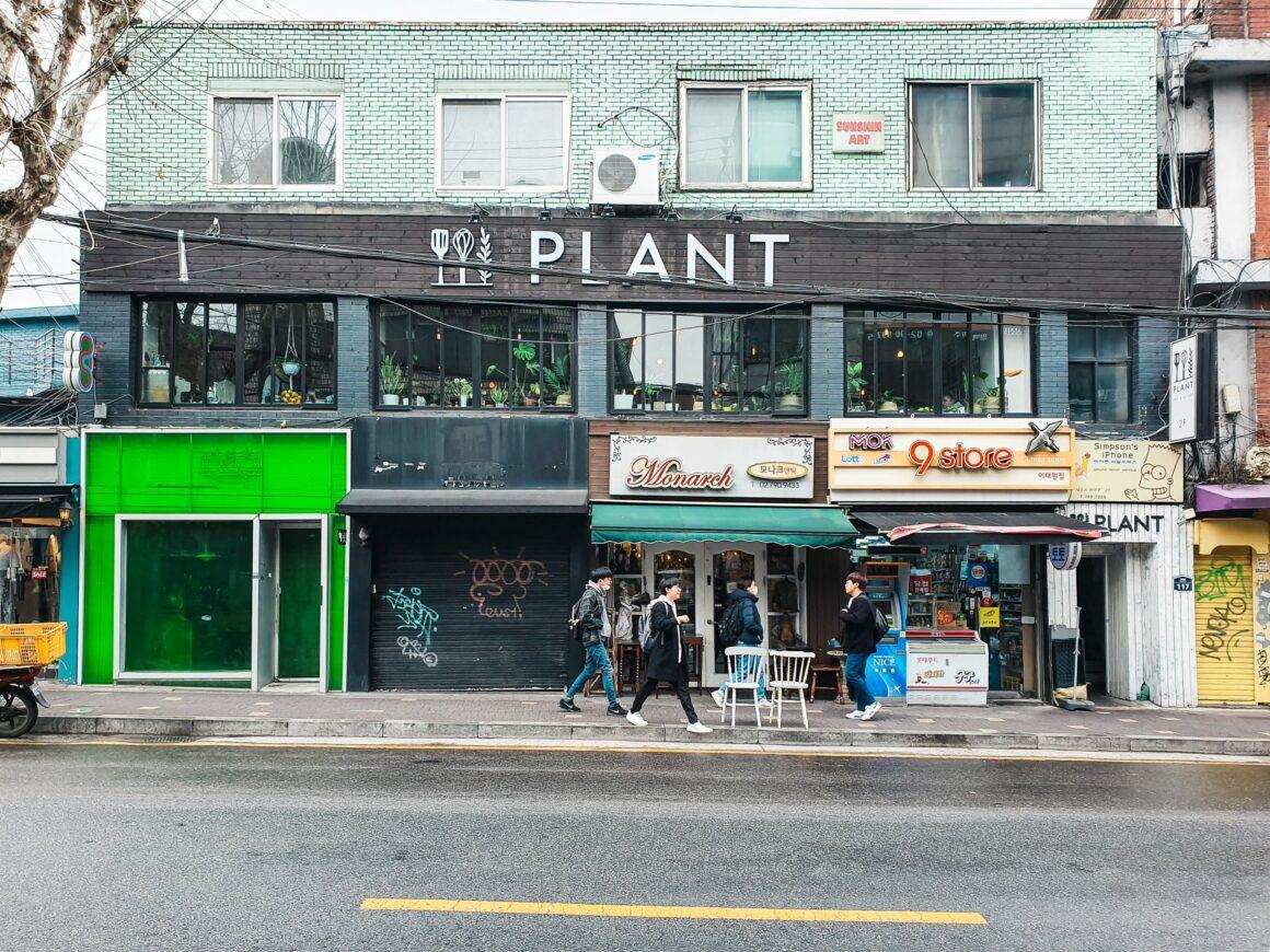 Plant Café Seoul