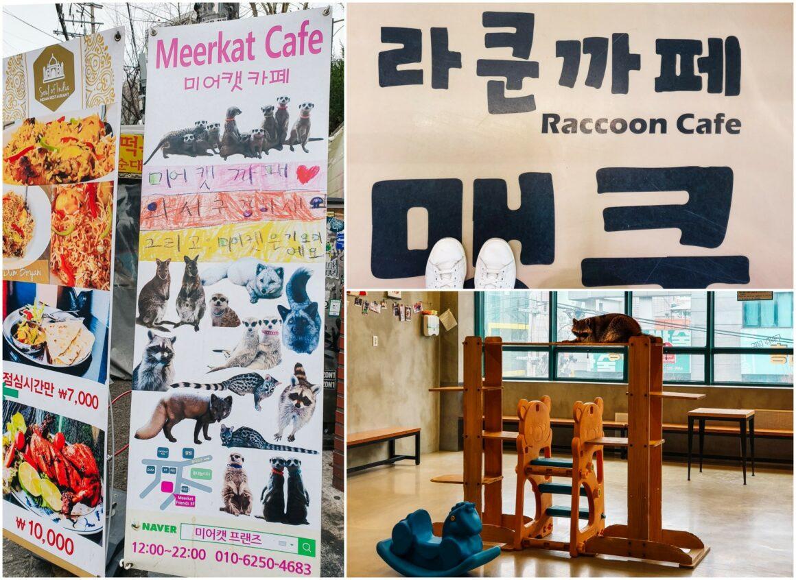 Themencafés Seoul