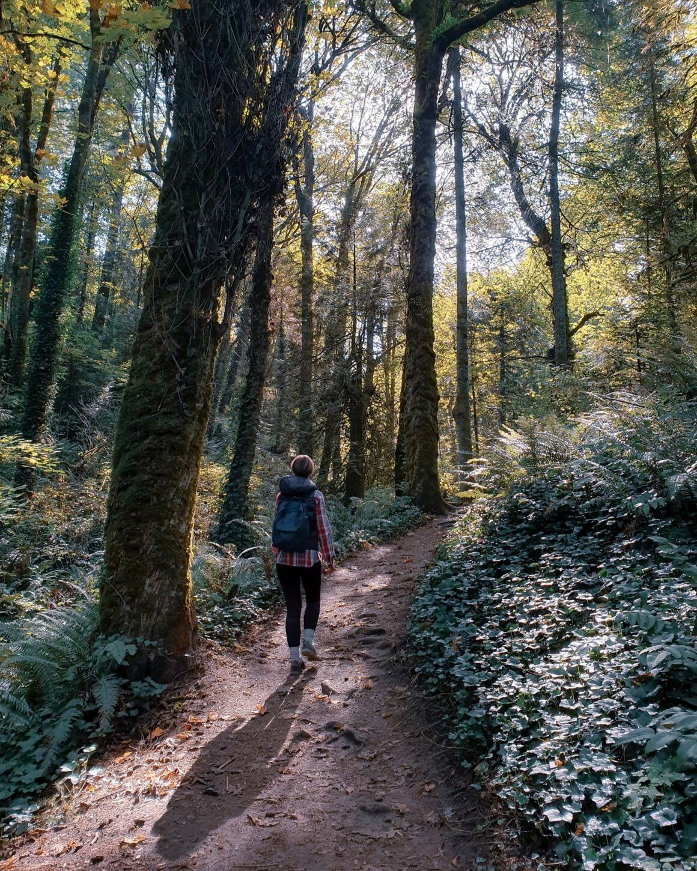 4T Trail Marquam Trail