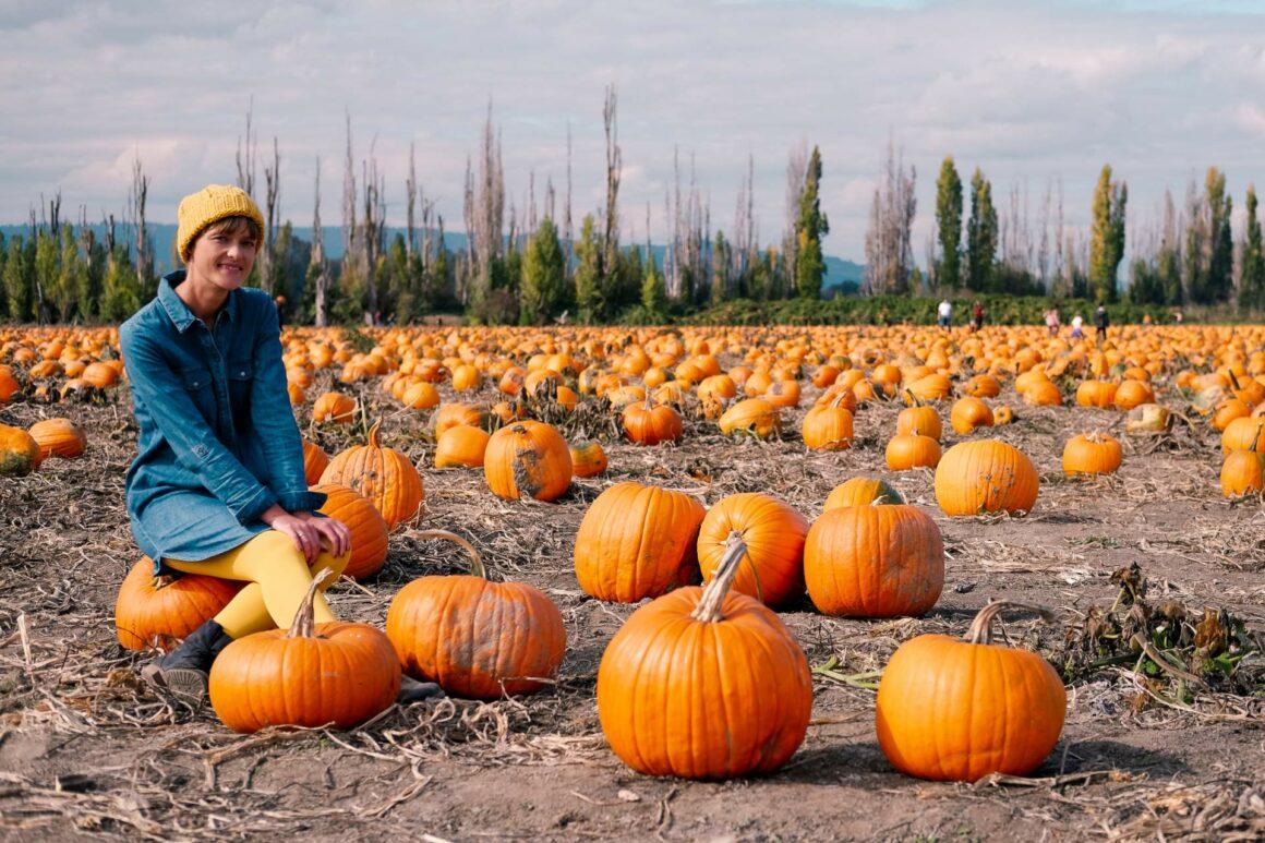 USA_Portland_SauvieIsland_PumpkinPatch-36
