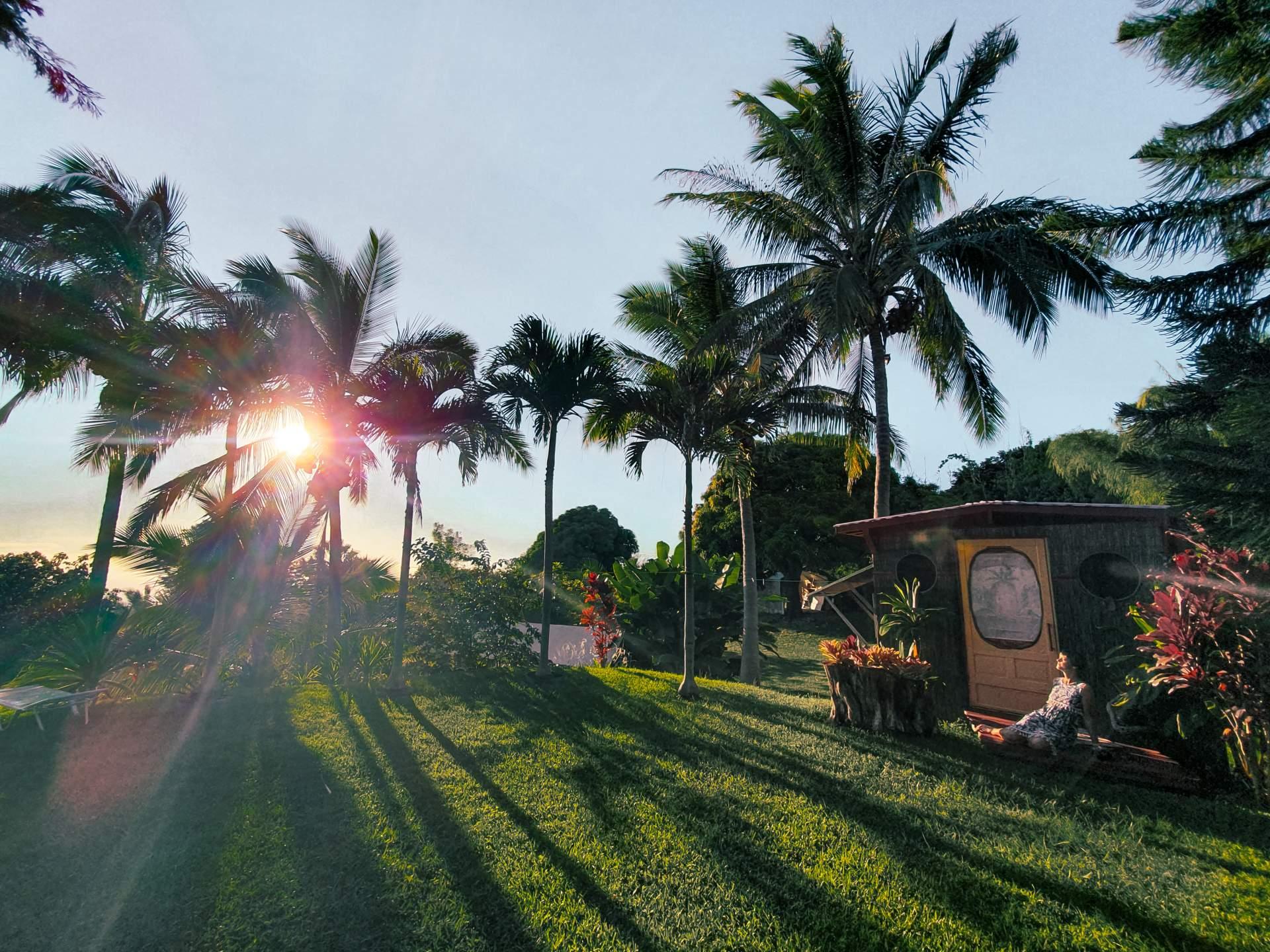 Banyan Tree Sanctuary – Organic farm & natural hideaway on Hawaii´s Big Island
