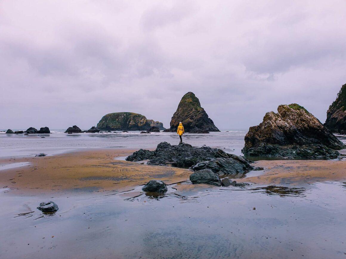 Samuel H. Boardman Oregon Whaleshead Beach